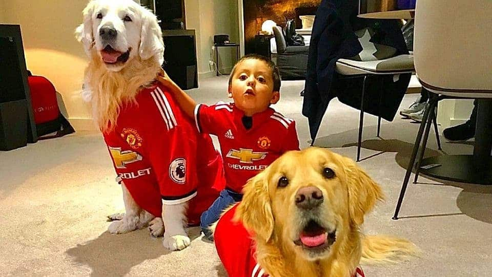 Alexis Sanchez Dogs Atom And Humber S Arrivals Complete The Manchester United Dogs Xi Photo