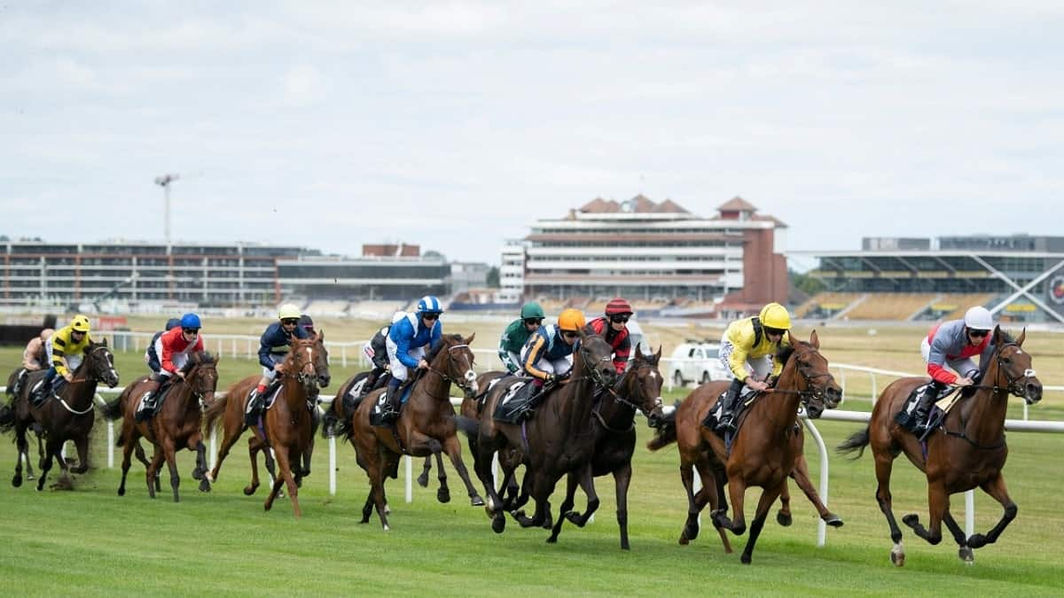 VBET traders nominate 3 value horse racing bets