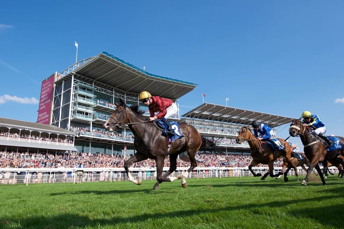 Get the value from Newmarket and York
