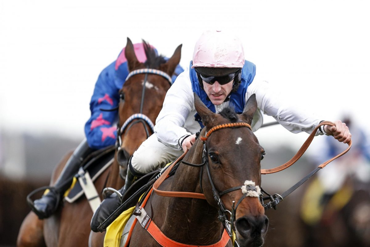 EXCLUSIVE: Brian Hughes considers Waiting Patiently's chances in the King George