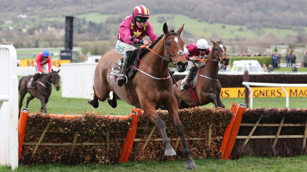 3 value tips on Gold Cup day at Cheltenham