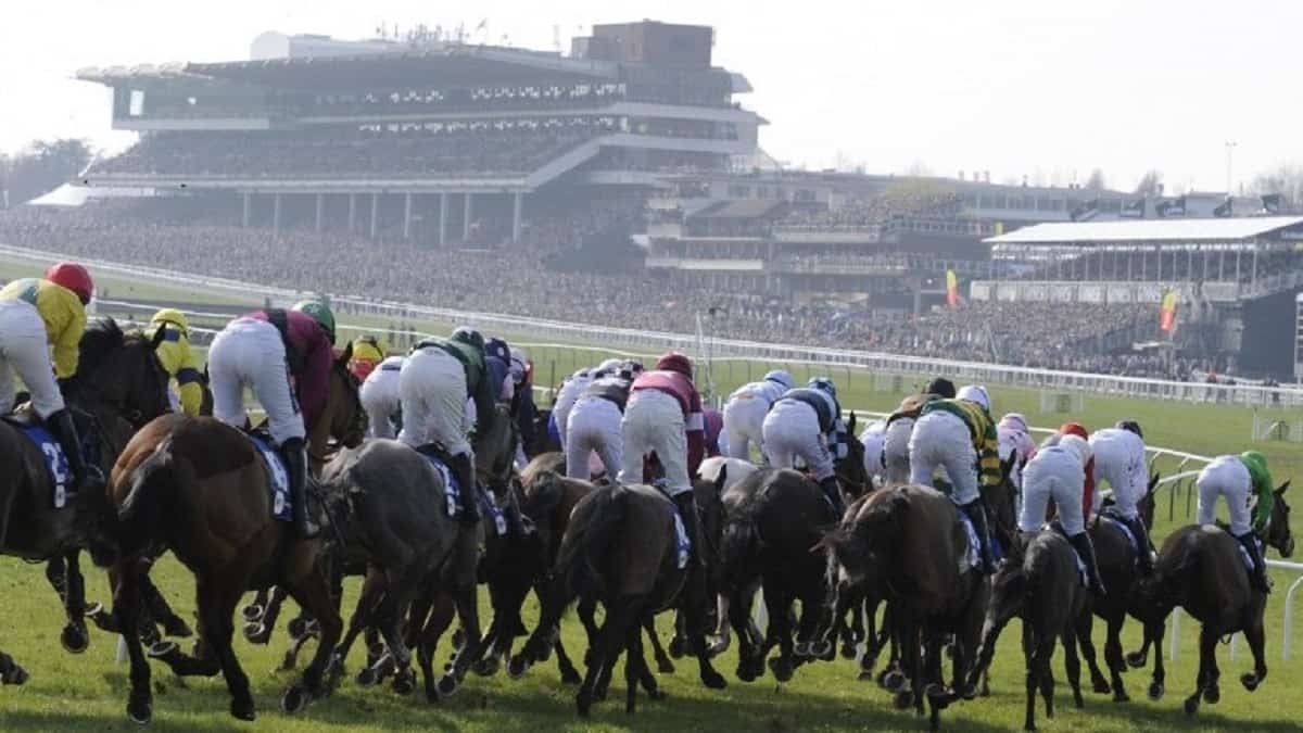 Horses to note on day 3 of the Cheltenham Festival