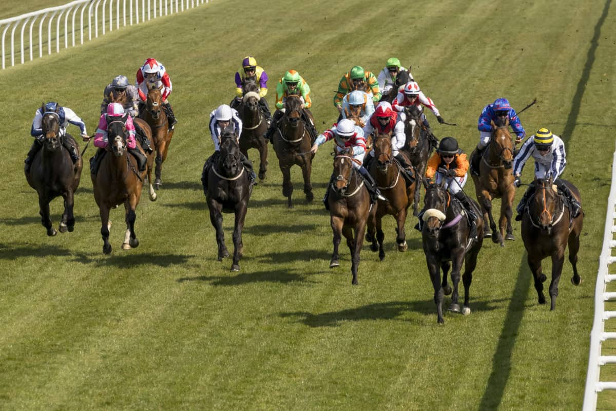 3 Saturday selections from the Trading Floor